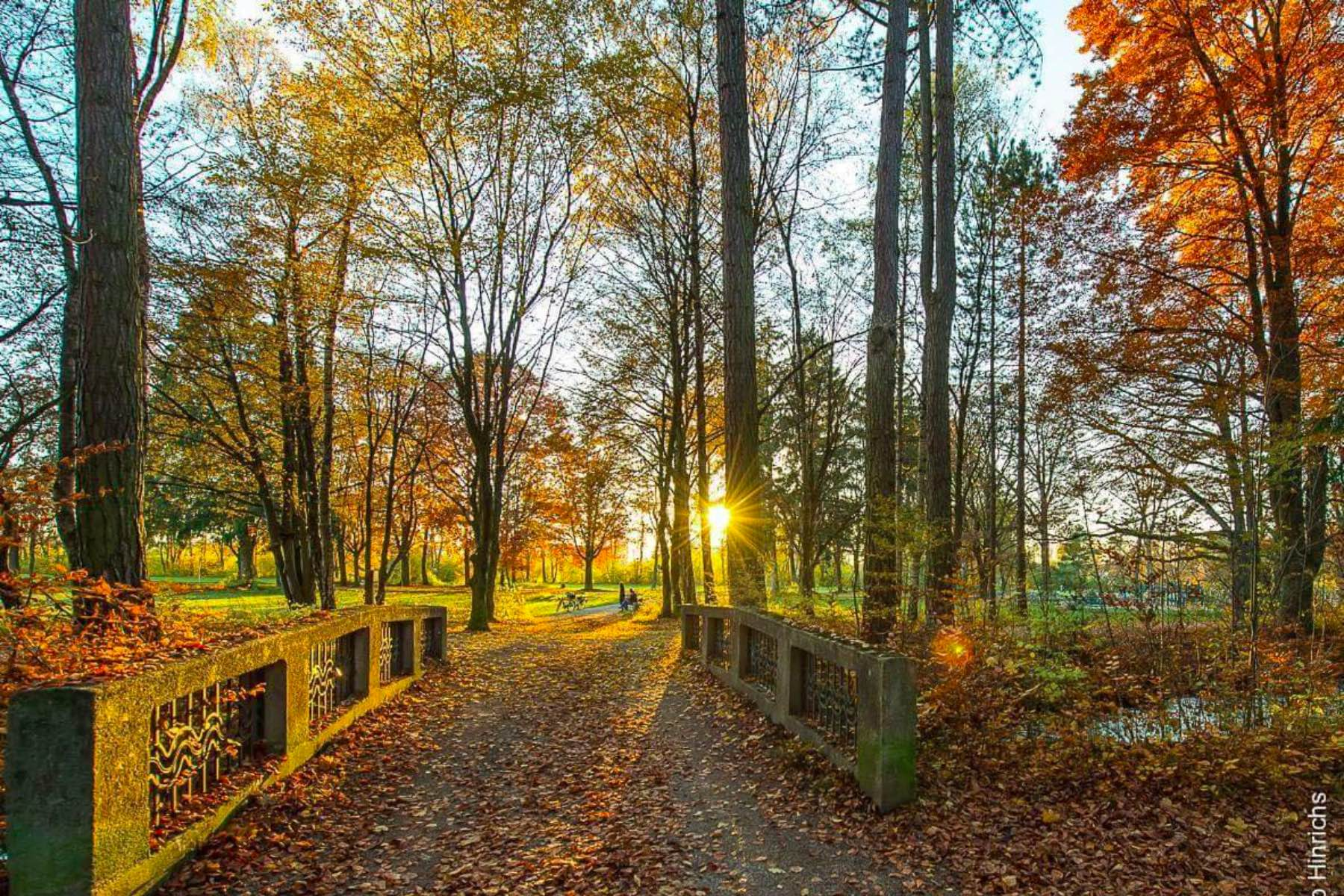 geheimtipp Augsburg siebentischwald – ©Ingo Hindrichs