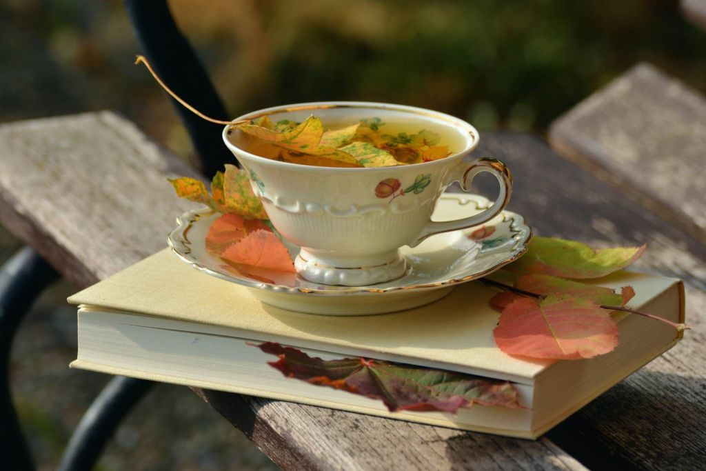 geheimtipp Augsburg Teezeit in Augsburg