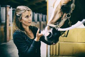 geheimtpp augsburg pferde sport4 – ©Unsplash