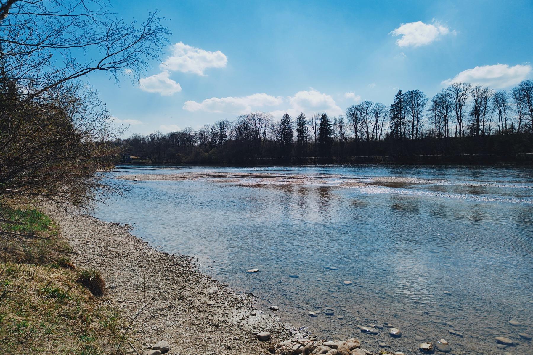Landsberger Wildpark Frühjahr 7 Blick auf den Lech 2 Lechufer